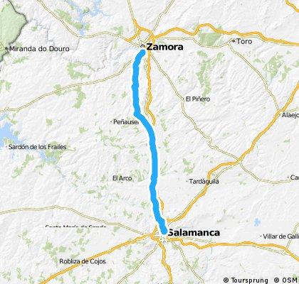 Salamanca - Zamora por el camino de Santiago
