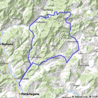 Sibiciu de Sus -Colti-Gura Teghi-Furtunesti-Braesti-Bozioru-Muscelul C.-Sibiciu de Sus