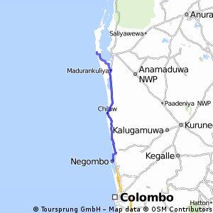Negombo -Dolphin village