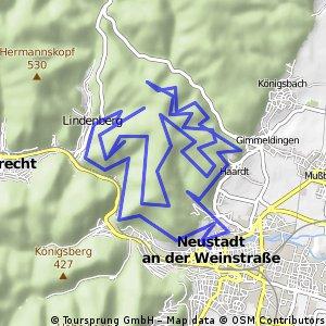 Sigma Sport Bikemarathon - Neustadt an der Weinstraße - Kurzdistanz