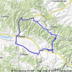 Borod-Sinteu-Alesd-VaduCrisului-TopadeCris-Borozel-Borod