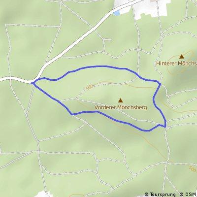 Runde im Mönchswald