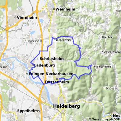 Radstrecke Römerman Ladenburg