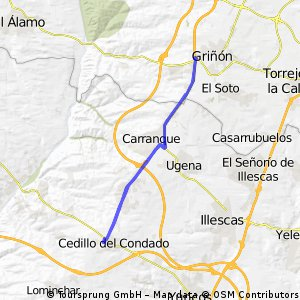 Cedillo-Griñon