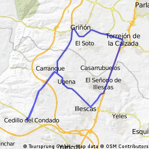 Cedillo-Griñon-Illescas-Cedillo