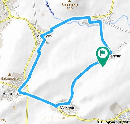 Joggingrunde Pleitershein, Volxheim, Hackenheim, Pfaffen-Schwabeiheim, Pleitersheim, 12,2 KM