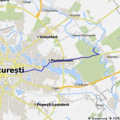 Bucuresti-Pustnicu