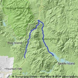 Tonto - Roosevelt Lake