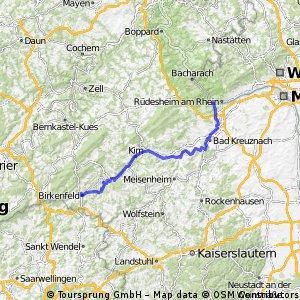 4. Tg Birkenfeld-Bingen