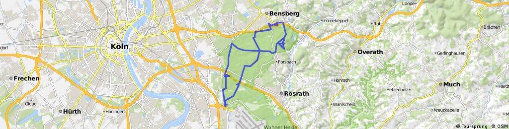MTB Königsforst vom 22.11.2009