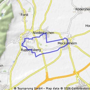 Deidesheim-Meckenheim 10,84 km