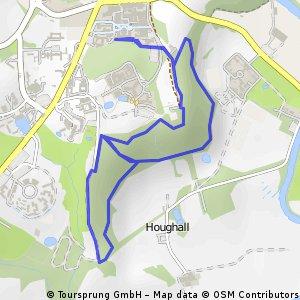 Houghall_Woods_run_#1