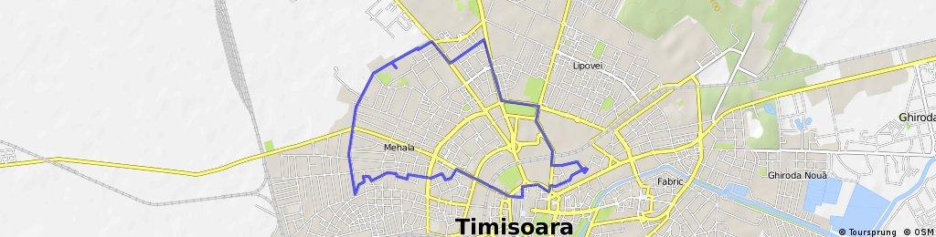 ride through Timişoara
