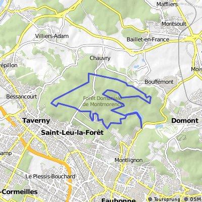 Montmorency 1