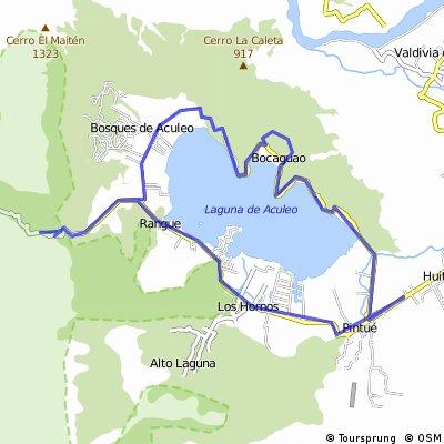 Laguna aculeo + cepillo