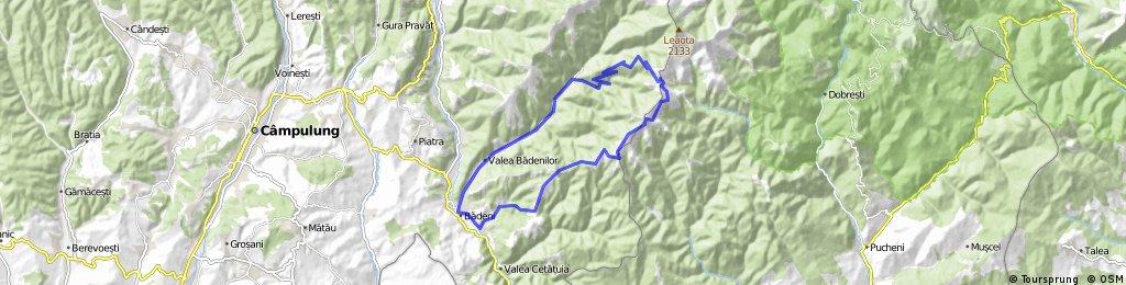 Valea Badenilor spre varful Leaota, coborare spre Cotenesti