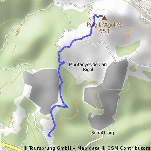 Lledoner-Puig D'AGULLES