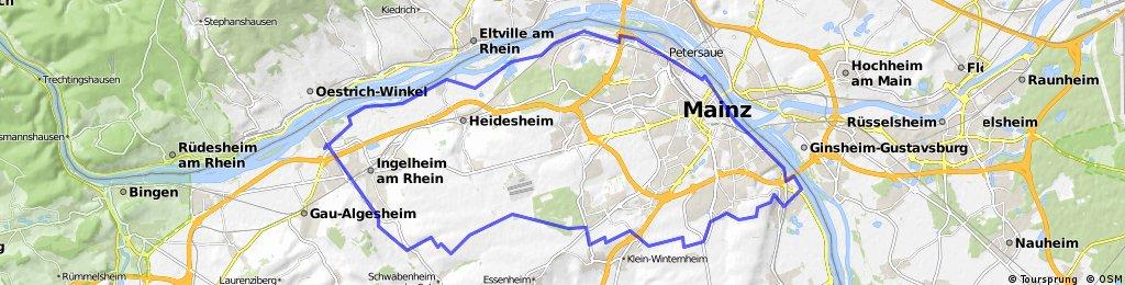 MTB Tour Laubenheimer Höhe