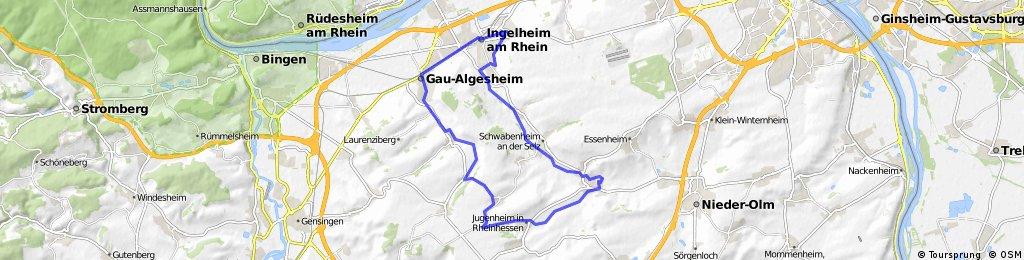 32_Ingelheim – Jugenheim – Schwabenheim – Ingelheim