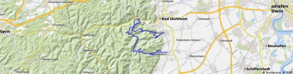 Trail-Tour Deidesheim-Hadenburg-Wachenheim