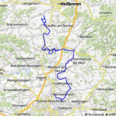 Neckar abwärts