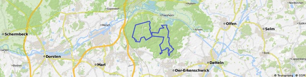 Haltern - Moosberg Rundfahrt