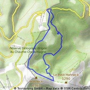 Col de la Schlucht - Frankenthal - Honeck