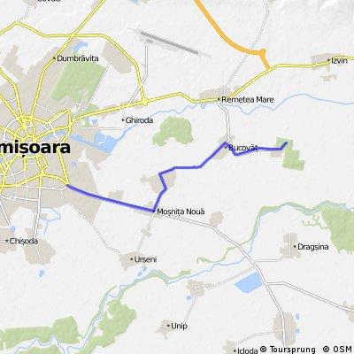 Timisoara-Mosnita-Bucovat-Bazos