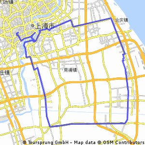 Pudong recon