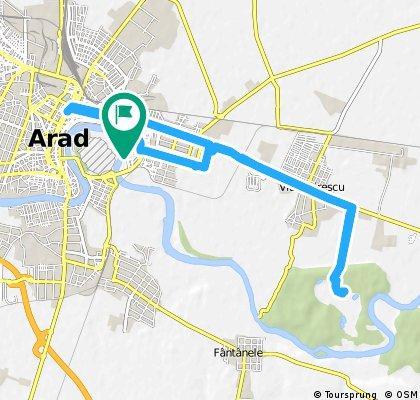 ride through Arad