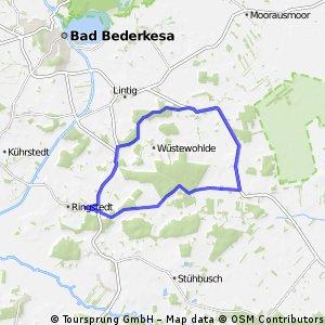 Ringstedt-Großenhain und zurück