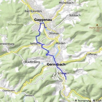 Arbeitsweg mittel (Scheuern-Selbach-Salzwiesen-GaggenauerBenzWerk)