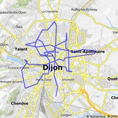 Dijon relief