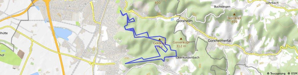 Weinheim - Um den Goldkopf - Ritschweier Runde