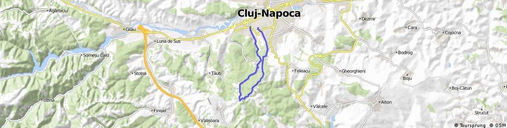 Kolozsvár  - Árpád csúcs