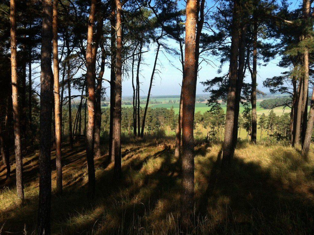 Rangsdorf see