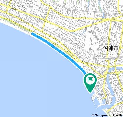 Numazu Beach