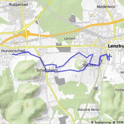 Hunzi > Lenzburg > Hunzi