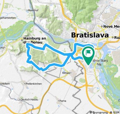 BA5-Hainburgswald