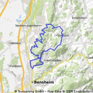 MTB Odenwald