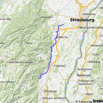 Veloroute du vignoble - Dachstein / Riquewihr