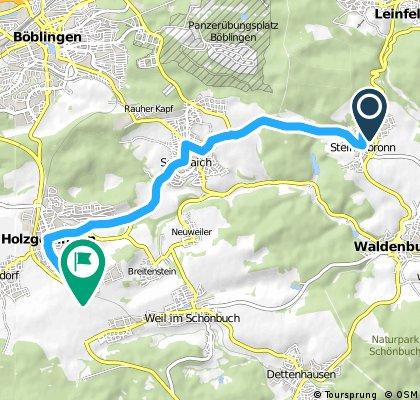 Ausfahrt von Steinenbronn nach Holzgerlingen