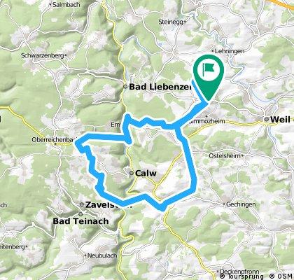 Rund um Calw, Rötelbach / Schweintalrunde vom 11. Mai, 9:02