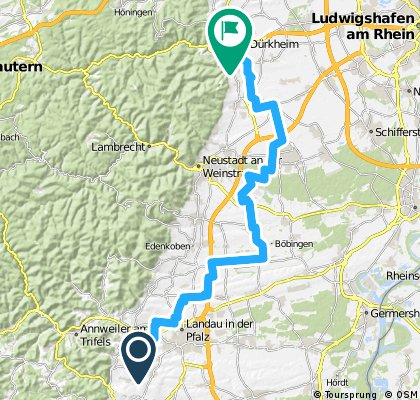Pfalz - Tag 2: Ilbesheim - Bad Dürkheim (Weingarten)