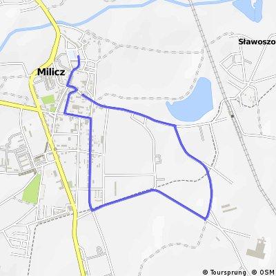 Finisz 4,5 km - Milicz