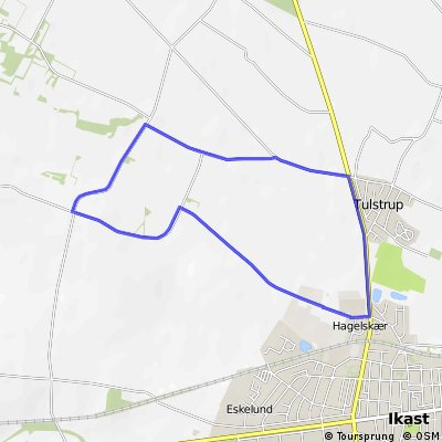 Licens Herning lille rute 8 km (2016)