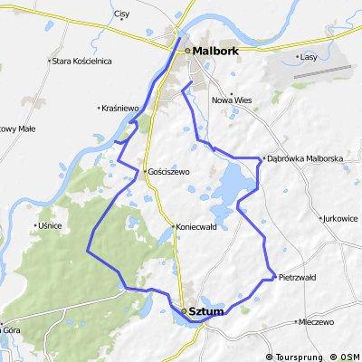 4+. Południowy, powiślański szlak przez lasy i miasto Sztum