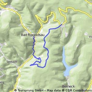 Schwarzwald Wanderung: Tag 5. zum Burgbachwasserfall