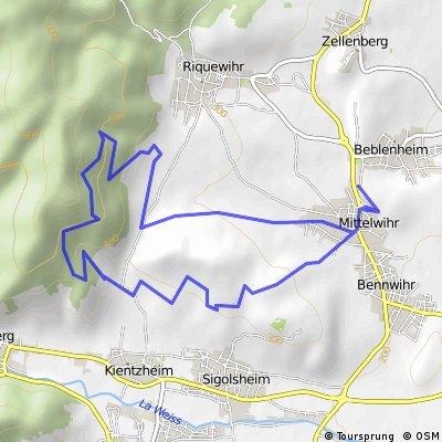Beblenheim - Rosenburg - Beblenheim