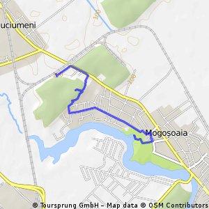 Quick ride through Mogoșoaia